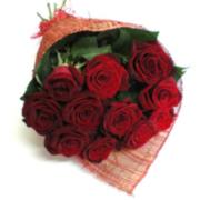 голландские розы. скидки. доставка